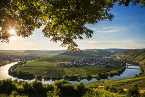 The Moselle loop at Trittenheim overlooking the vineyards.