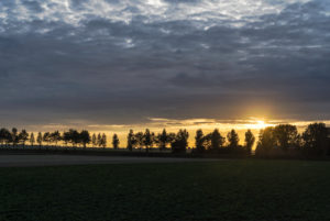 Sunset behind the silhouette of an avenue in Zeeland, Netherlands