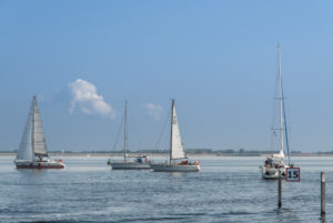 Sailboats on the Grevelingenmeer, Netherlands