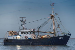 Fishing trawler in the North Sea in the evening