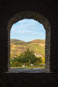 Blick auf einen Weinberg durch ein Fenster der römischen Villa in Longuich.