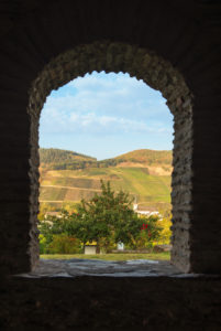 View of a vineyard through a window of the Roman villa in Longuich.