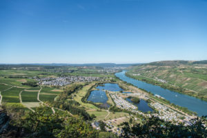 View of Riol and the Moselle