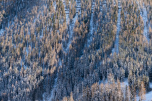 Sonnenuntergang in Winterwald mit Neuschnee im Gebirge