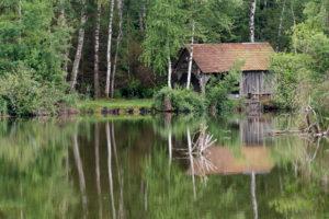 Deutschland, Baden-Württemberg, Oberschwaben, Pfrunger Ried, Birken und Hütte spiegeln sich im Moorsee