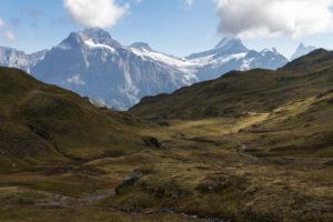 Switzerland, Canton Bern, Bernese Oberland, Grindelwald, First, Alp Baach with a view of Wetterhorn, Bärglistock, Lauteraarhorn, Schreckhorn, Finsteraarhorn