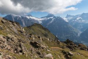 Switzerland, Canton Bern, Bernese Oberland, Grindelwald, view of the Wetterhorn, Bärglistock, Lauteraarhorn, Schreckhorn, Finsteraarhorn
