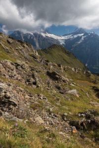 Switzerland, Canton Bern, Bernese Oberland, Grindelwald, view of Wetterhorn, Bärglistock, Lauteraarhorn, Schreckhorn in clouds