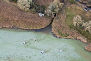 Europe, Germany, Baden-Wuerttemberg, Lake Constance, Untersee, Gnadensee, nature reserve Wollmatinger Ried, in autumn, from above