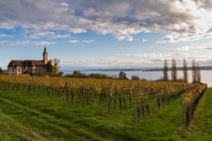 Europe, Germany, Baden-Wuerttemberg, Lake Constance, Birnau monastery, pilgrimage church, Cistercians, in autumn