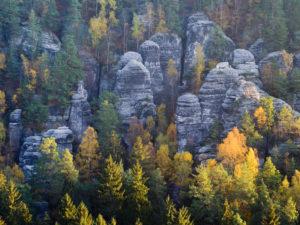 Felstürme im Wehlgrund, Elbsandsteingebirge, Bad Schandau, Nationalpark Sächsische Schweiz, Sachsen, Deutschland