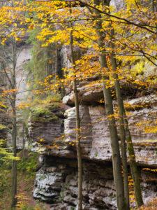 Herbst im Polenztal, Hohnstein, Nationalpark Sächsische Schweiz, Sachsen, Deutschland