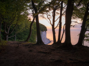 Chalk rocks with sunrise, national park Jasmund, Rügen, Mecklenburg-West Pomerania, Germany