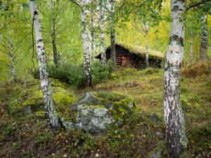 Valdres open air museum, Norway