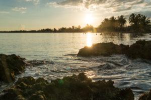 light sundown with view over the sea on palms, Cuba