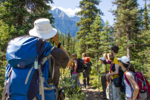 Hiking group in the clear forest, Rocky Mountains, mountains in the background, Canada