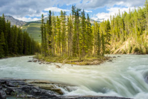 Rocky Mountains, island in rapid stream, Canada