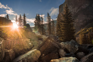 Boulders in backlight with the sun, firs, Rocky Mountains