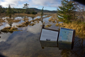 Cape Scott Provincial Park, flooded path, signs under water, Canada