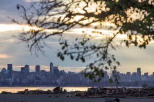 Vancouver skyline with beach and tree, evening mood, Canada