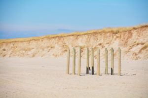play in the dunes, Sylt, Germany