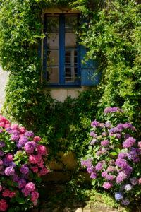 Flower arrangement in the old town of Saint Goustan, Departement Morbihan, Brittany, France
