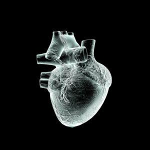3d, cgi, [M], symbol, heart, medicine, organ, x-ray
