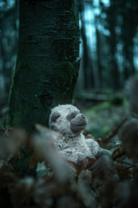 Spielzeug im Wald, Mystik