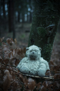 Toys in the forest, mysticism