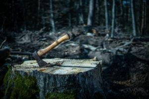 Die Axt im Wald