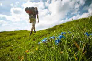 Wanderer auf der Klewenalp bei Beckenried in der Schweiz