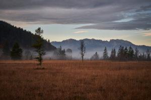 Morgenstimmung mit Morgennebel im Herbst im Moor in der Filzn bei Gaißach, Bayern