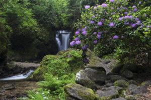 Germany, Baden-Württemberg, Black Forest, Grobbach, Geroldsau waterfall,
