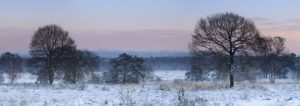 Germany, North Rhine-Westphalia, Wahner Heide, view from the Telegrafenberg in winter at sunrise,