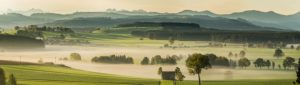 Morning fog above the hilly scenery of Allgäu near Leutkirch, Baden-Wuerttemberg, Germany,