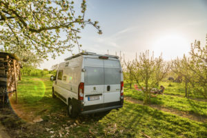 In spring, when the sun is shining and the sky is blue, a camper van stands idyllically on an orchard next to a wood pile. In front of it, a girl sits on a camping chair and reads a book. Breisach am Rhein, Kaiserstuhl, Baden-Wuerttemberg, Germany