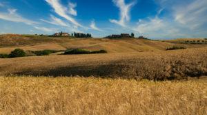 Europe, Italy, Tuscany, Siena Province, San Gimignano, Strada Provinciale 4 Volterrana, Tuscany Landscape,