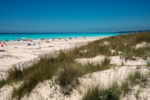 Europe, Italy, Vada, Vada Beach, Tuscany, Rosignano Marittimo, Livorno,