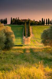Europe, Italy, Val d'Orcia, San Quirico, Genna Borborini Maria Eva, Agritourismo, Tuscany, Tuscan Landscape,