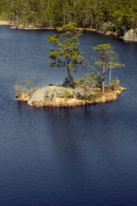 Tyresta By National Park close to Stockholm city