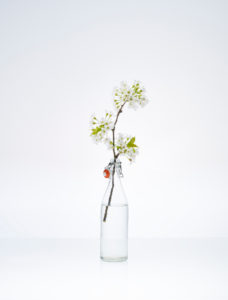 Transparent bottle with cherry branch and flower