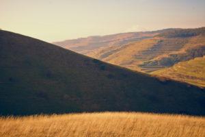 Bergrücken mit Gras im Sonnenlicht an einem Tag im Herbst