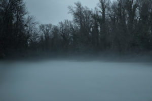 Pond in Alsace. Winter, trees, haze