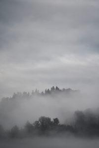 Schwarzwald, Berge, Wald, Regen, Nebel