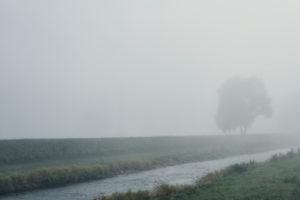 Fluss mit Flussufer und Baum im Nebel an einem Kanal