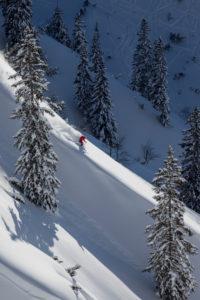 Tiefschneeabfahrt von der Rosshütte, bei Seefeld, Karwendel, Tirol, Österreich