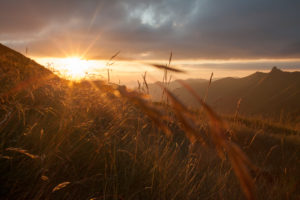 Sunrays, afterglow, mountain, landscape, France, blades of grass,
