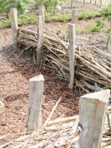 Benjes hedge, dead wood hedge made from loosely piled branches and twigs