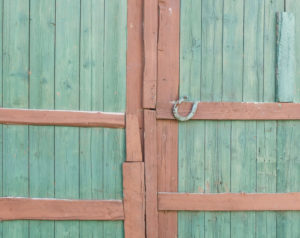 Green barn door with horseshoe