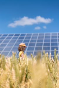 Woman in the cornfield, solar systems under a blue sky,